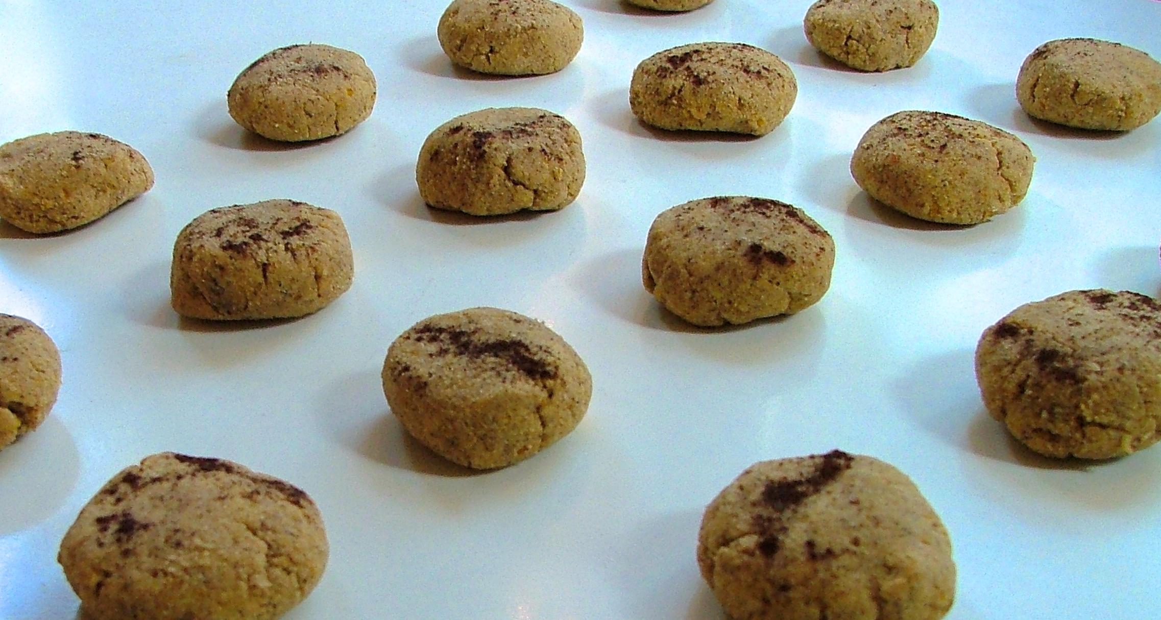 Grain Free Pumpkin Spice Cookies