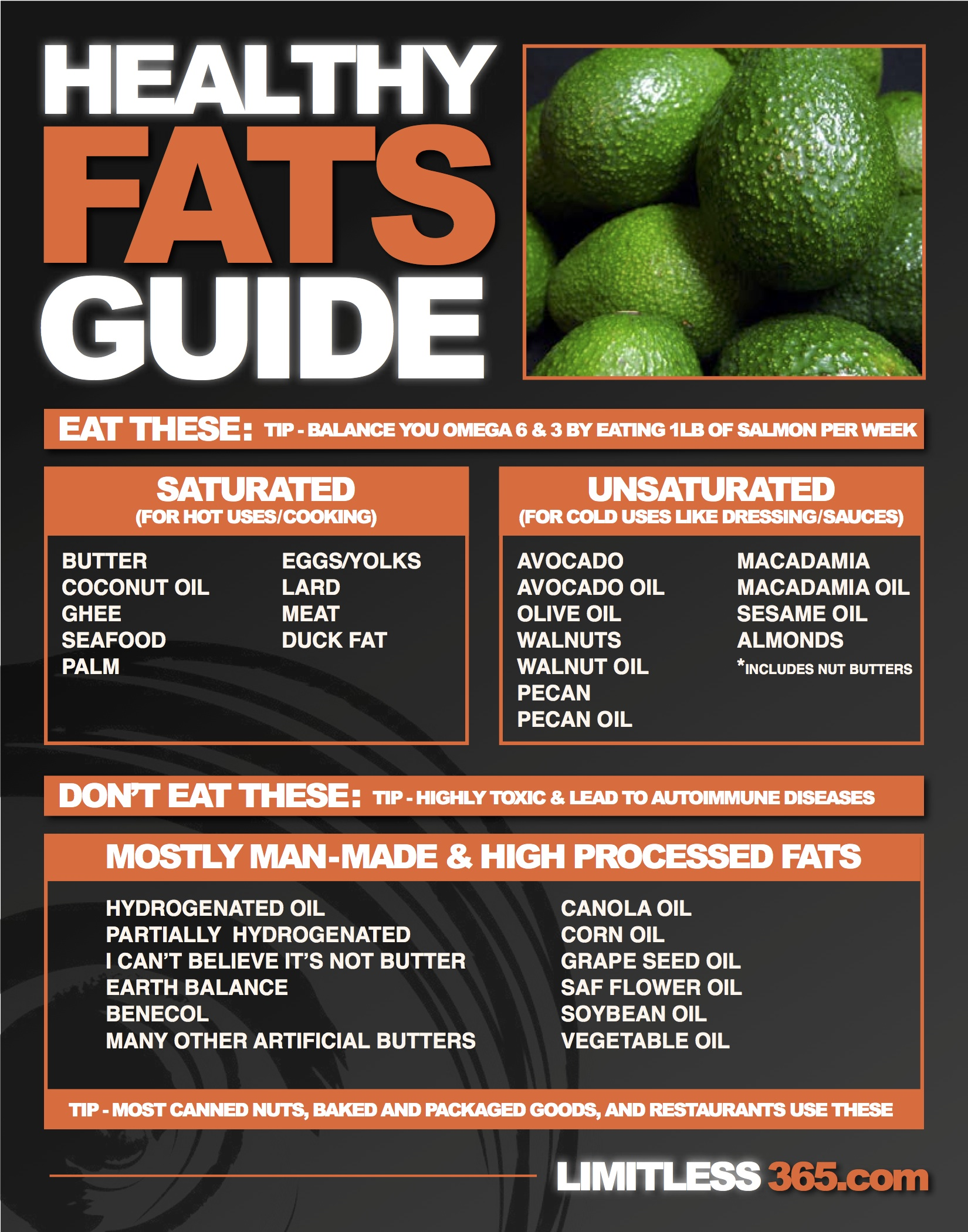 healthy fats guide by Justin Miller